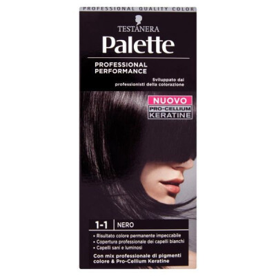 PALETTE PROFESSIONAL COLOR N.1-1 NERO