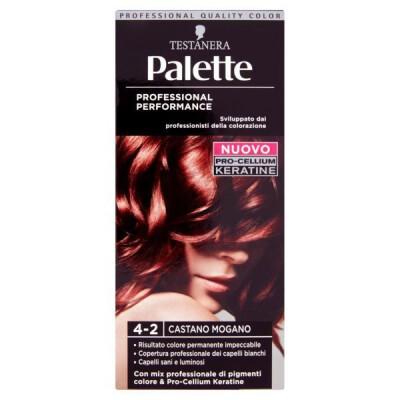PALETTE PROFESSIONAL COLOR N.4-2 CAST.MOGANO