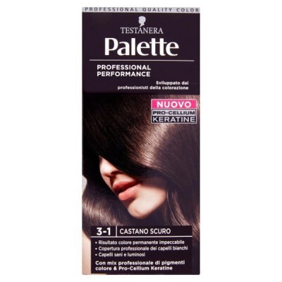 PALETTE PROFESSIONAL COLOR N.3-1 CASTANO SCURO