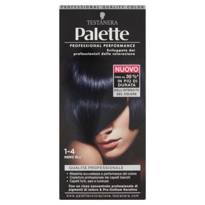 PALETTE PROFESSIONAL COLOR N.1-4 NERO BLU